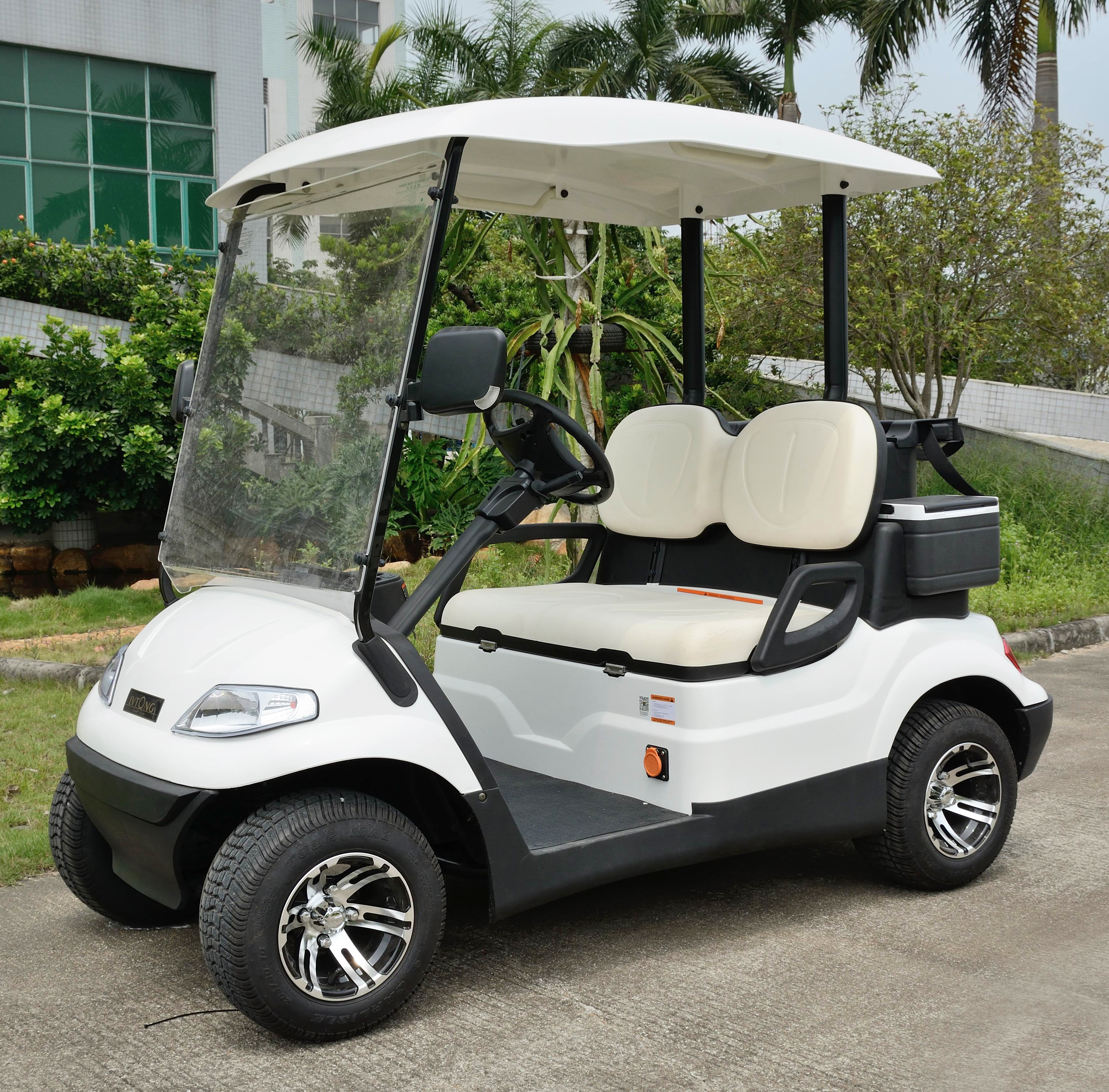 High Safe Mini Electric Vehicle Golf Cart With CE Certificate
